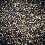 ザリガニの水槽のオススメの底砂は?