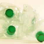 ザリガニをペットボトルで捕獲する