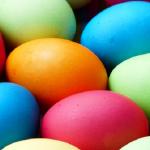 ザリガニの卵が白い、白くなる、ということについて調べてみました