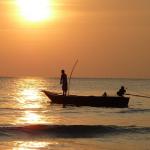 ザリガニ釣りに必要な餌と釣り方