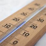 ザリガニを飼育する水温はおよそ5度から30度