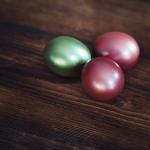 無精卵は孵化するのか、ザリガニの産卵について