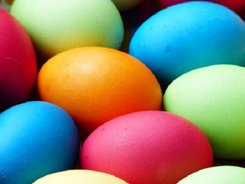 ザリガニ 抱卵 期間