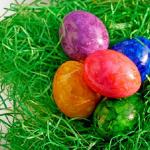 ザリガニが抱卵しているときカビが生えるのはどうして?