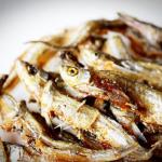 ザリガニの餌とその量について