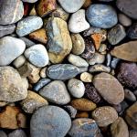 ザリガニの底床の砂、掃除のお手入れについて