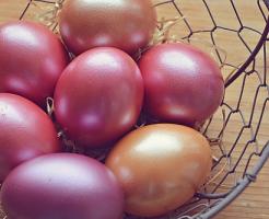 ザリガニ 卵 色 変化
